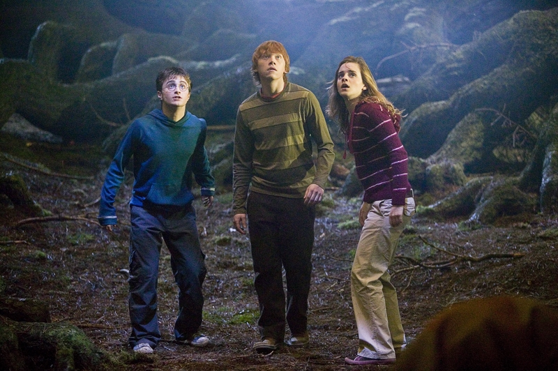 Information: Forbidden Forest Trio